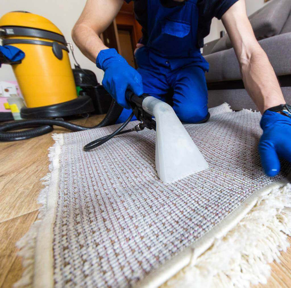 Go for professional rug cleaning