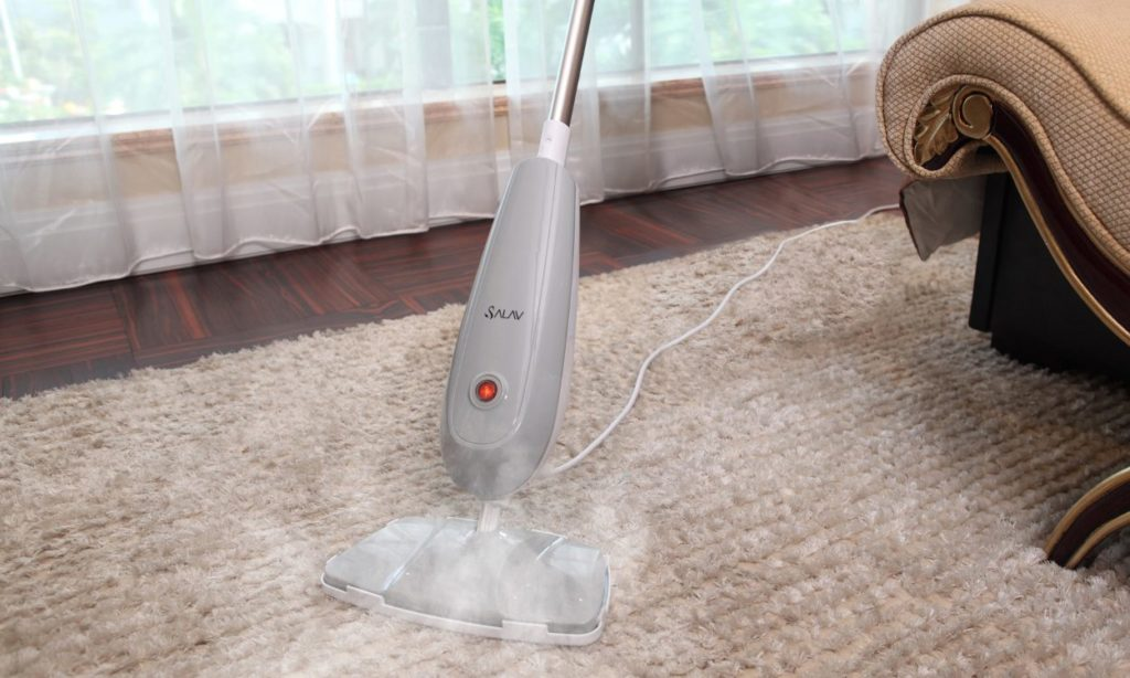 cleaning with a steamer